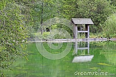Lake Schiederweiher