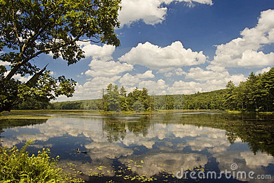 Lake with Sky and Reflection