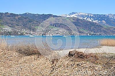 Lake Thun in early springtime