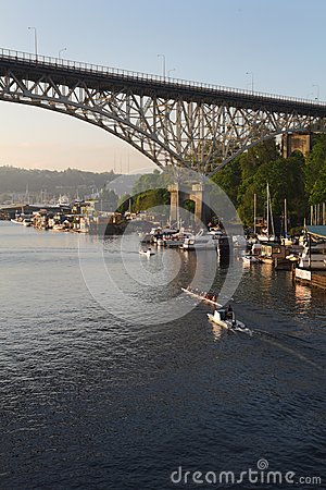 Free Lake Union Rowing Practice, Seattle, Washington Royalty Free Stock Photo - 25397755