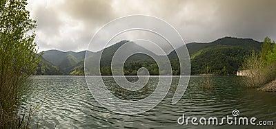 Lake Valley Walnuts