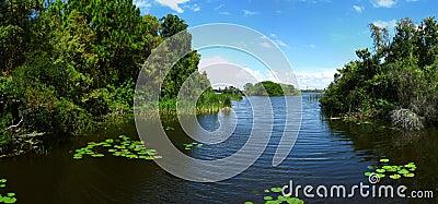 Lake & vegetation on its banks