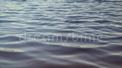 Lake Water Ripple. A high definition video clip of a lake water. Taken on an early morning where there is no wind and the water is calm stock video