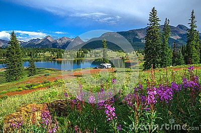 Lake and Wildflowers