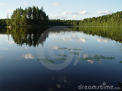 Lake and woods in Finland