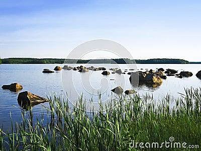 Peaceful lakeside with blue sky