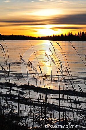Free Lakeside Sunset Royalty Free Stock Image - 7341996