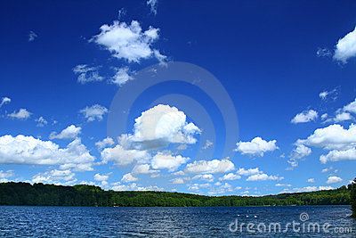 Lakeside with tree line