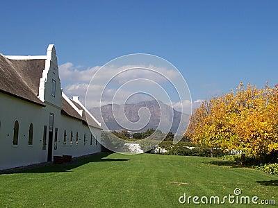 lamotte vineyards Cape S.Afric