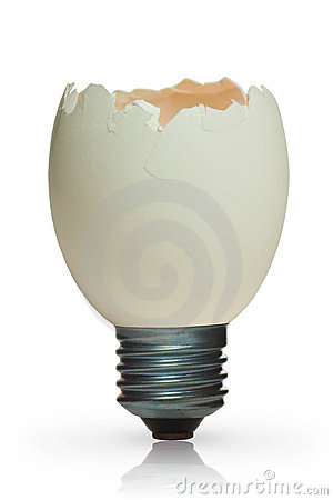 Lamp with bulb from egg