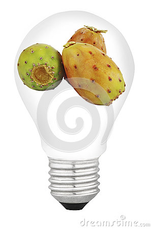 Lamp with fruit