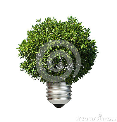 Lamp made of green tree. Ecology conception