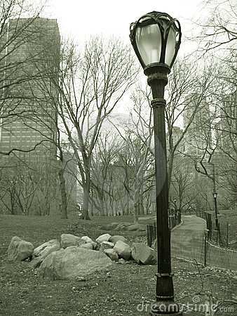 Lampost in central park, nyc