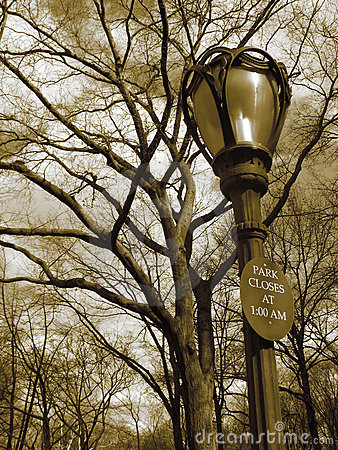Lampost, sign, trees