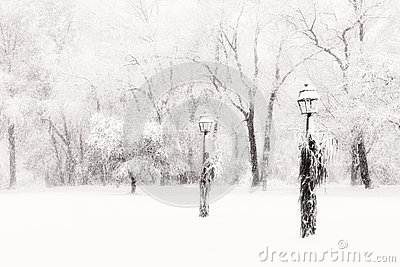 Lamposts in blinding snow storm