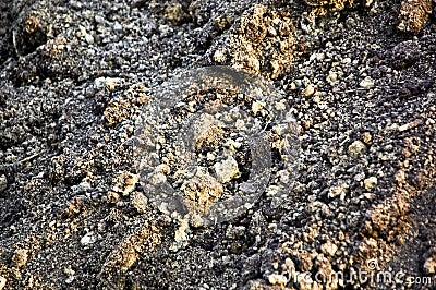 Land (soil)