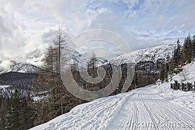 Landascape Dolomites