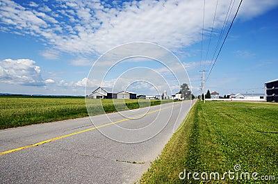 Landelijke weg en landbouwbedrijven