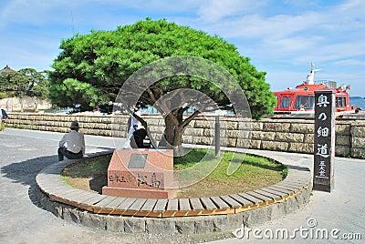 Landmark of Matsushima Japan Editorial Photo