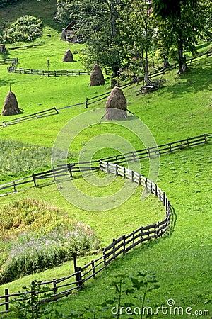 Free Landscape Stock Images - 8466354