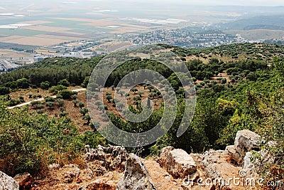 Landscape.  Agricultural land.