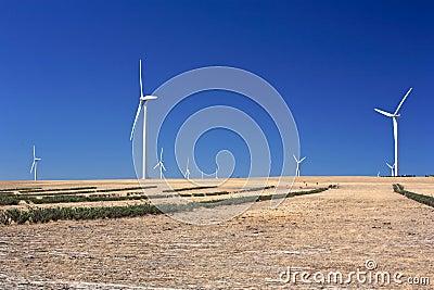 Landscape.Australia.