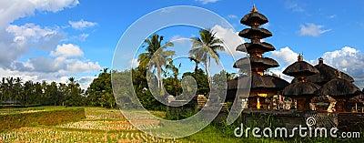 Landscape of Bali, Indonesia