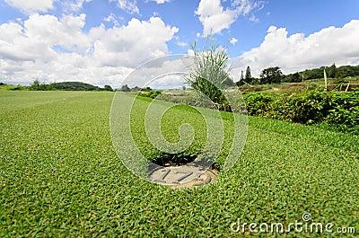 Landscape of a beautiful green golf