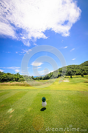 Landscape of a beautiful green golf