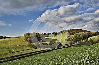 Landscape in Brecon Beacons