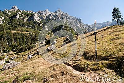 Landscape with Bucsoiu Ridge