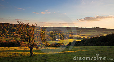Landscape in the Chilterns at sunset