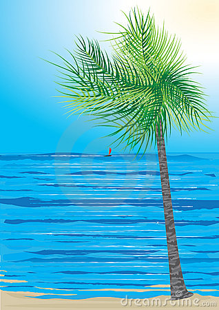 Landscape Of Coconut Tree And Sea_eps