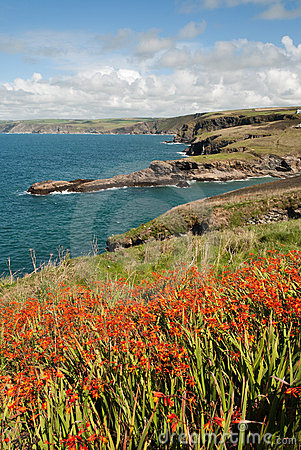 Landscape in Cornwall