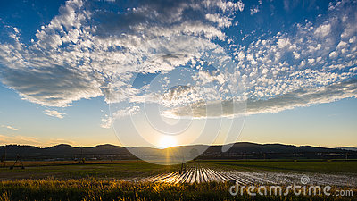 Landscape of cultivated fields and farms with mountain range in the background. Irrigation system for industrial agriculture. Back Stock Photo