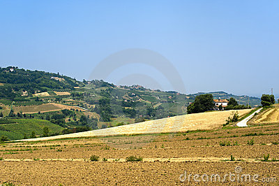 Landscape in Emilia Romagna (Italy) at summer