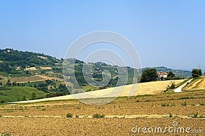 Landscape in Emilia Romagna (Italy) at summer