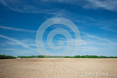 Landscape with a field