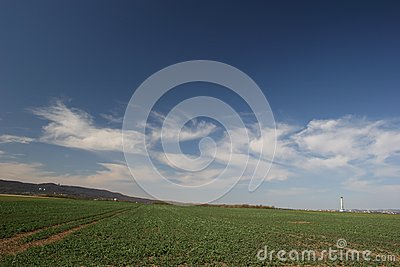 Landscape with field and cirrus clouds