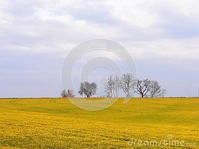 Landscape in Germany, Baviera