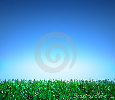 Landscape: green grass, clear blue sky