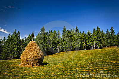 Landscape with hay stack