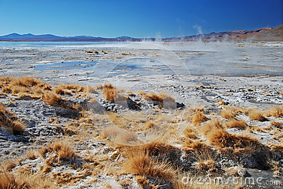 Landscape with hot springs in bolivian desert