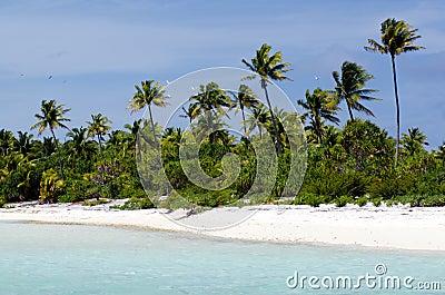 Landscape of of Maina Island in Aitutaki Lagoon Cook Islands