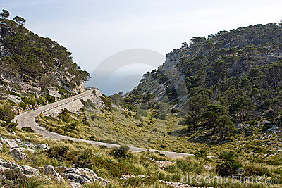 Landscape from Mallorca