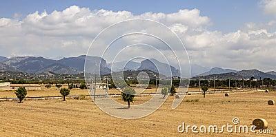 Landscape in Mallorca