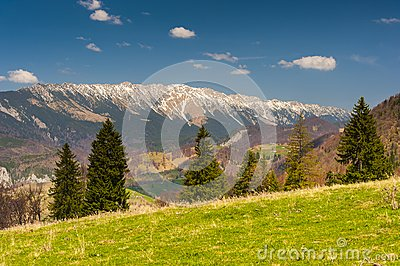 Landscape with mountains in the summer