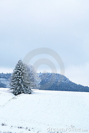 Landscape near Pasterka village in Poland