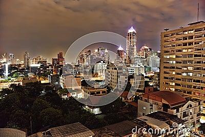 Landscape - night metropolis illuminated by lights
