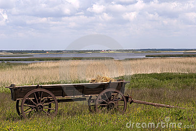 Landscape with old-fashion cart
